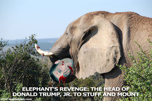 Elephant takes Donald Trump,Jr's head for a trophy mount
