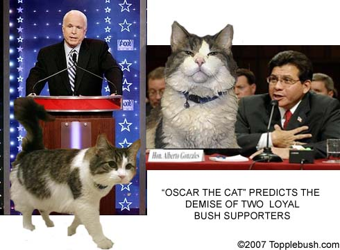 Oscar the cat makes more predictions